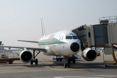 Alitalia Vliegtuig Royalty-vrije Stock Foto