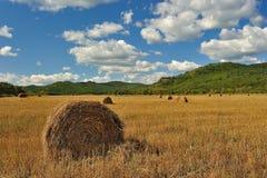 Alito invisibile dell'autunno. Fotografie Stock Libere da Diritti