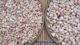 Alium sativum, conosciuto comunemente come aglio, è una specie nel genere della cipolla, allium Immagini Stock