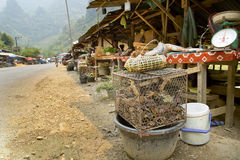 Alive Crab in Laos Local Market, around Vang Vieng Royalty Free Stock Images