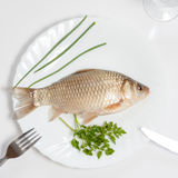 Alive fish. Is lying on the white plate Stock Images
