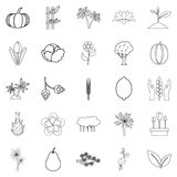 Alive world icons set, outline style. Alive world icons set. Outline set of 25 alive world vector icons for web isolated on white background Royalty Free Stock Photo