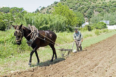 ALJEZUR, PORTUGAL 4 APRIL 2011: Farmer is ploughing the land in Royalty Free Stock Image