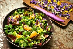 Alkaline, spring salad with flowers, fruit and valerian salad Stock Images