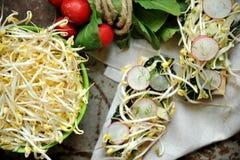 Alkalisk sund mat: sojabönagrodd med rädisan och grönkål royaltyfria foton