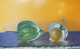 Alkekengi and fruit in orange background Royalty Free Stock Images