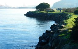 Alki Beach Royalty Free Stock Photography
