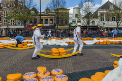 Alkmaar Nederländerna - April 28, 2017: Ostbärare på tradit Royaltyfri Fotografi
