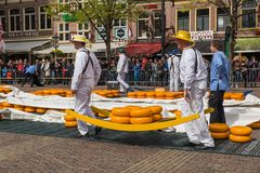 Alkmaar, Netherlands - April 28, 2017: Cheese carriers at tradit Stock Photography