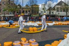 Alkmaar, Países Bajos - 28 de abril de 2017: Portadores del queso en el tradit Fotografía de archivo libre de regalías