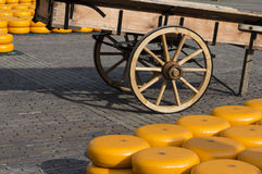 Alkmaar's historic cheese market Royalty Free Stock Images
