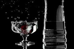 alkohol royaltyfri foto