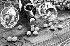 Alkohol fortfarande, drink, vin, flaska, exponeringsglas, druvor royaltyfria foton