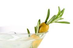 alkoholcoctail martini Royaltyfria Foton