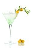 alkoholcoctail martini Royaltyfria Bilder