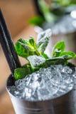 Alkoholdryck för coctail för mintkaramellsötad medicintillsats på träbräde i bar eller beträffande Arkivbild