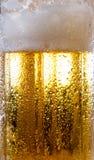 Alkoholgetränkbier auf Makrobild mit Scheinen und Schaum Stockfoto