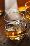 Alkoholiczny whisky bourbon w szkle z lodem obrazy royalty free