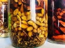 Alkoholische Tinkturen von Heilpflanzen stockbilder