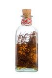 Alkoholisches Getränk des Rosmarins Lizenzfreies Stockbild