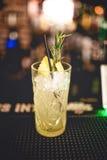 Alkoholiserad coctaildrink för uppfriskning på den lokala stången Gin- och limefruktcoctailen med rosmarin och is tjänade som för Arkivbild