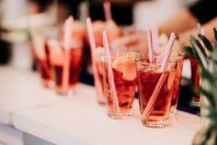 Alkoholiserad coctaildrink f?r uppfriskning p? st?ngen eller baren Den gin-, vodka- och limefruktcoctailen med äppelcider och is  royaltyfri bild