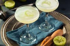 Alkoholiserad limefrukt och Gin Gimlet arkivfoto