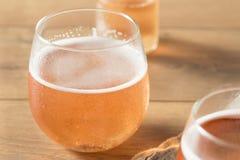 Alkoholiserade mousserande Rose Cider royaltyfri fotografi
