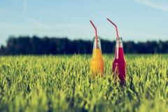 Alkoholiserat parti Coctails röd och orange ny dryck i flaskor som står i sommargräs med sugrör royaltyfri bild