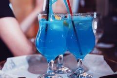 Alkoholu napój obrazy royalty free