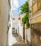 Allée étroite dans la vieille ville Capri photo libre de droits
