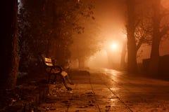 Allée brumeuse en parc de ville de nuit, paysage brumeux avec les lanternes brûlantes, arbres et bancs image stock