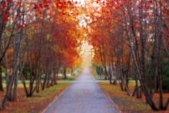 Allée d'automne en parc, tache floue Images stock