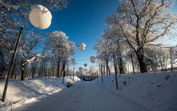 Allée d'hiver, froid de congélation Photos stock