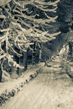 Allée d'hiver - style ancien Photographie stock libre de droits