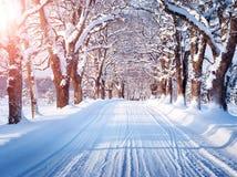 Allée dans le matin neigeux Photos stock