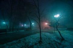 Allée de l'hiver la nuit Photo stock