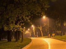 Allée de nuit Photo stock