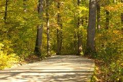 Allée de parc dans l'automne Photographie stock libre de droits