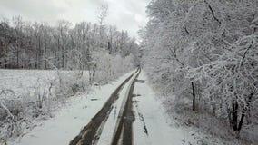 allée en bois d'hiver couvert de neige avec une route clips vidéos