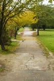 Allée en parc Images libres de droits