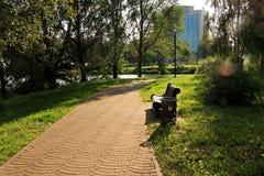 Allée en parc de ville en été Photographie stock libre de droits