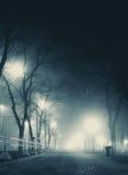 Allée foncée dans le paysage urbain silencieux de colline de brouillard en hiver Images libres de droits