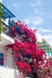Allée grecque traditionnelle sur l'île de Sifnos photo stock