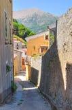 allée Morano Calabro La Calabre l'Italie photos libres de droits