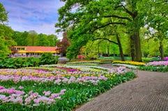 Allée parmi les tulipes colorées, parc de Keukenhof, Lisse en Hollande image libre de droits