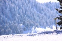 Allée piétonnière dans la neige Image stock