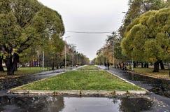 Allée pour des promenades avec de vieux arbres, automne images stock