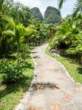 Allée tropicale verte luxuriante de station de vacances de retraite au lac Khao Sok Photographie stock libre de droits