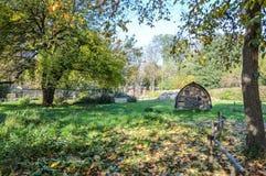 Allées de châtaigne dans les jardins de Tuileries au jour ensoleillé d'automne Image libre de droits